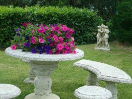 Esterno / Veranda / Giardino